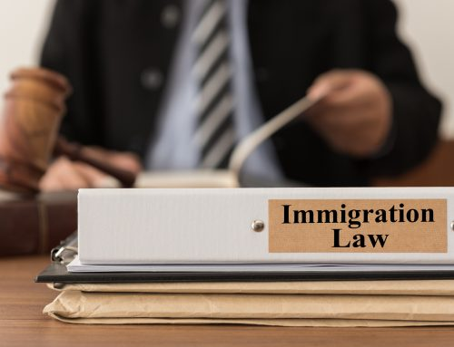 Reasons To Hire A Tampa Immigration Lawyer