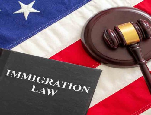 Immigration Cases Delayed? Advice from an Immigration Lawyer